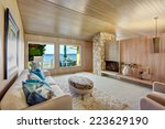 beautiful house interior with... | Shutterstock . vector #223629190
