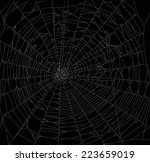 illustration with spider web... | Shutterstock .eps vector #223659019