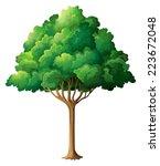 Illustration Of A Close Up Tree
