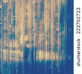 vintage  textured background... | Shutterstock . vector #223702723