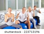 happy group of senior people in ... | Shutterstock . vector #223713196