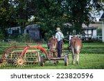 Amish Farmer On Horse Drawn...