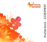 autumn leaves  vector... | Shutterstock .eps vector #223839859