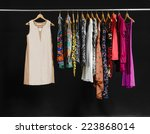 female variety of clothes... | Shutterstock . vector #223868014