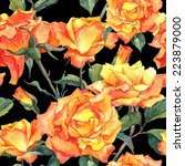 watercolor floral seamless... | Shutterstock . vector #223879000
