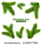 vector christmas tree branches | Shutterstock .eps vector #223897780