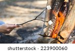 Person roasting marshmallows on a stick over a campfire while camping - stock photo
