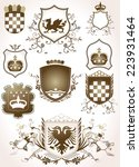 shield design set with various... | Shutterstock . vector #223931464