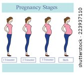 illustration with pregnant... | Shutterstock .eps vector #223937110