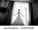 portrait of the beautiful bride ... | Shutterstock . vector #223945960
