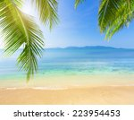 palm and tropical beach | Shutterstock . vector #223954453