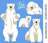 polar bears collection.  | Shutterstock .eps vector #224014453