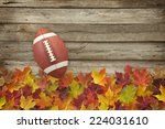 college style football on fall... | Shutterstock . vector #224031610