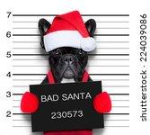 Mugshot Of A Christmas Santa...