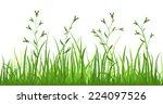 financial growth fresh grass...   Shutterstock .eps vector #224097526