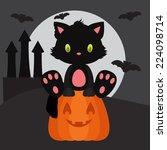 halloween illustration with... | Shutterstock .eps vector #224098714