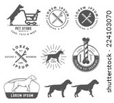 Stock vector set of retro pet care labels badges and design elements 224103070