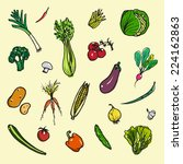 set of hand drawn vegetables... | Shutterstock .eps vector #224162863