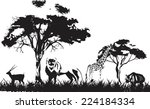 in african savannah black white ...