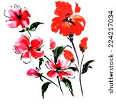 red summer flowers | Shutterstock . vector #224217034