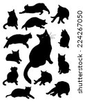 Stock vector silhouettes of cats 224267050