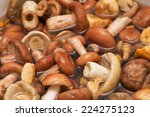 background of different fungi.... | Shutterstock . vector #224275123