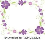 Frame Of The Violets