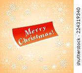 vector illustration christmas... | Shutterstock .eps vector #224319340