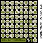 set of summer flat icons | Shutterstock .eps vector #224323168