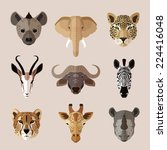 african southern animal... | Shutterstock .eps vector #224416048