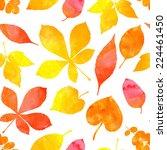 orange watercolor painted... | Shutterstock .eps vector #224461450