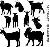 goats silhouette | Shutterstock . vector #224467750