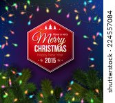 christmas typography label... | Shutterstock .eps vector #224557084