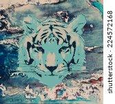 vector sketch of a tiger's face ... | Shutterstock .eps vector #224572168