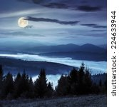 coniferous forest on hillside over foggy valley in autumn mountains at night in full moon light - stock photo