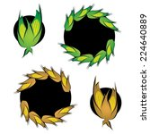 corn cob symbol set in colors   ...   Shutterstock .eps vector #224640889
