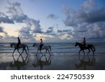 Blurred Silhouettes Of Horses...