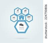 infographic honeycomb structure ... | Shutterstock .eps vector #224750806