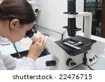 work in the laboratory - stock photo