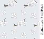 vanilla pattern including... | Shutterstock .eps vector #224836078