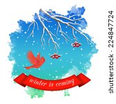 winter landscape with flying...   Shutterstock .eps vector #224847724