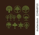 vector organic tree icons  ... | Shutterstock .eps vector #224868910