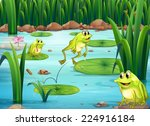 Illustration Of Many Frogs In...