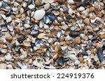 Sea   Shells Beach North Of...