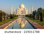 taj mahal   a famous historical ... | Shutterstock . vector #225011788