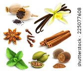 herbs and spices decorative... | Shutterstock .eps vector #225077608