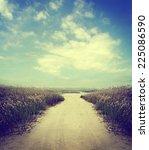 rural road and sky | Shutterstock . vector #225086590