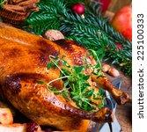 christmas duck | Shutterstock . vector #225100333