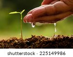 seed and planting concept with... | Shutterstock . vector #225149986