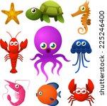 Nine Sea Life Animal Species...